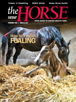 The Horse Subscription with February 2018 Issue PDF Download
