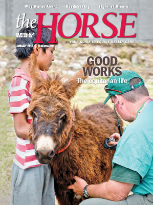 The Horse - January 2018 Issue