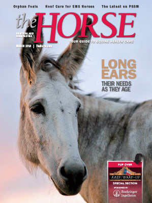 The Horse Subscription with March 2018 Issue PDF Download