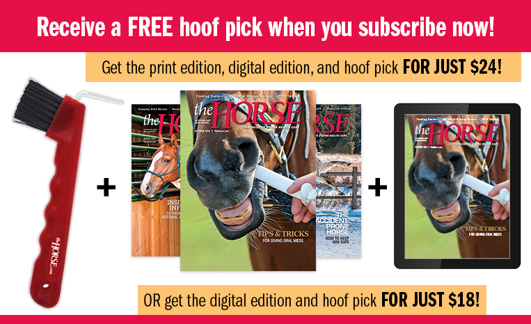 The Horse Magazine Subscription With Free Gift The Horse Books