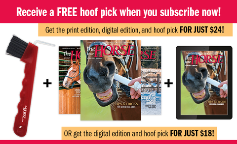 The Horse Magazine Subscription with FREE GIFT!