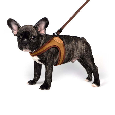 Easy Dog Harness - Brown