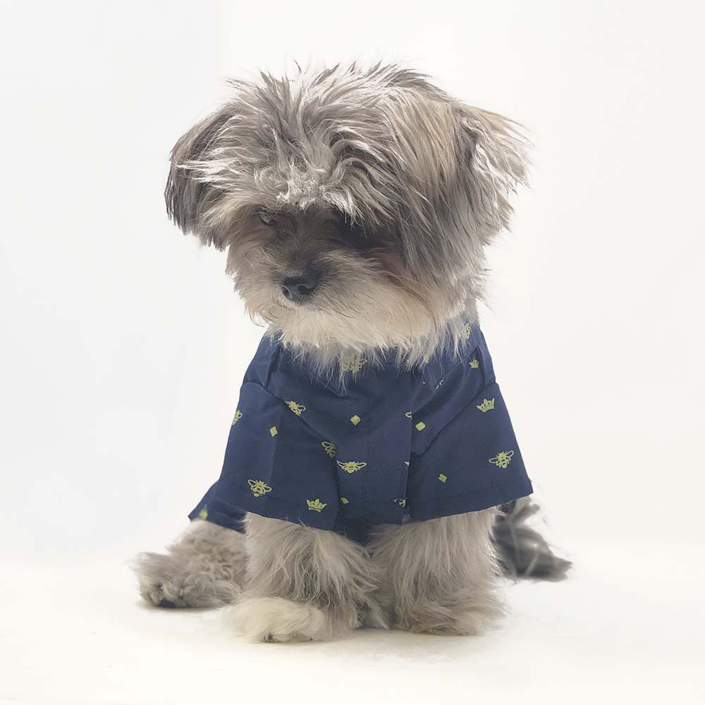 Bumble Bee Button Down Dog Shirt