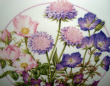 "Royal Doulton Nature's Own Beauties 8"" Diameter Collector's Plates"