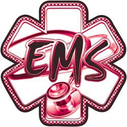 Pink EMS Star of Life Hoodie