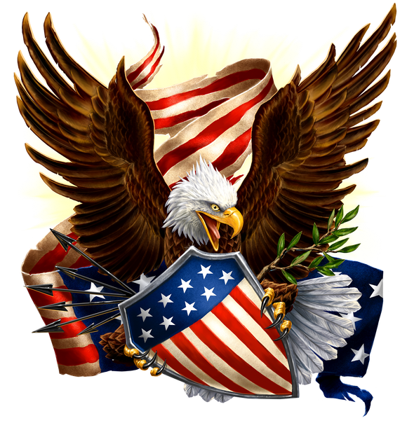 Eagle Defending Honor and America T-Shirt, ap80018
