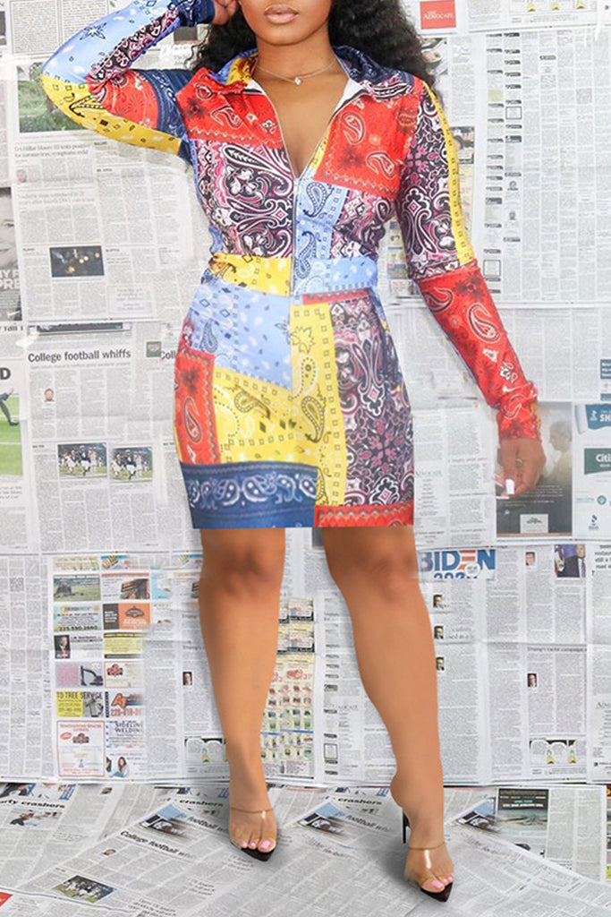 Digital Print Zipper Collar Midi Dress