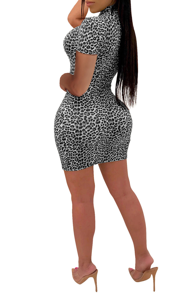 Leopard Print Short Sleeve Mini Dress