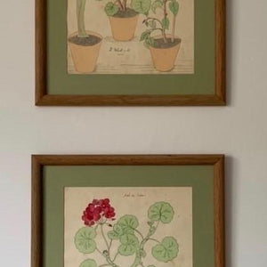 Framed Watercolors