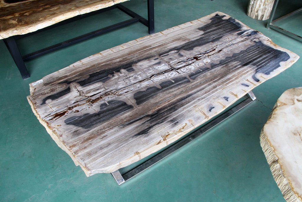Petrified Wood Slab 171 Coffee Table