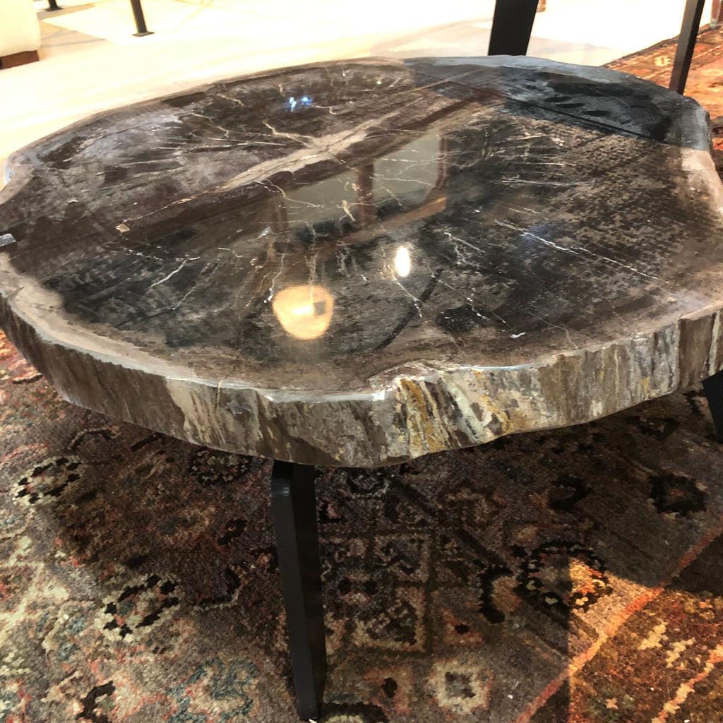 Petrified Wood Slab 1.9 Coffee Table