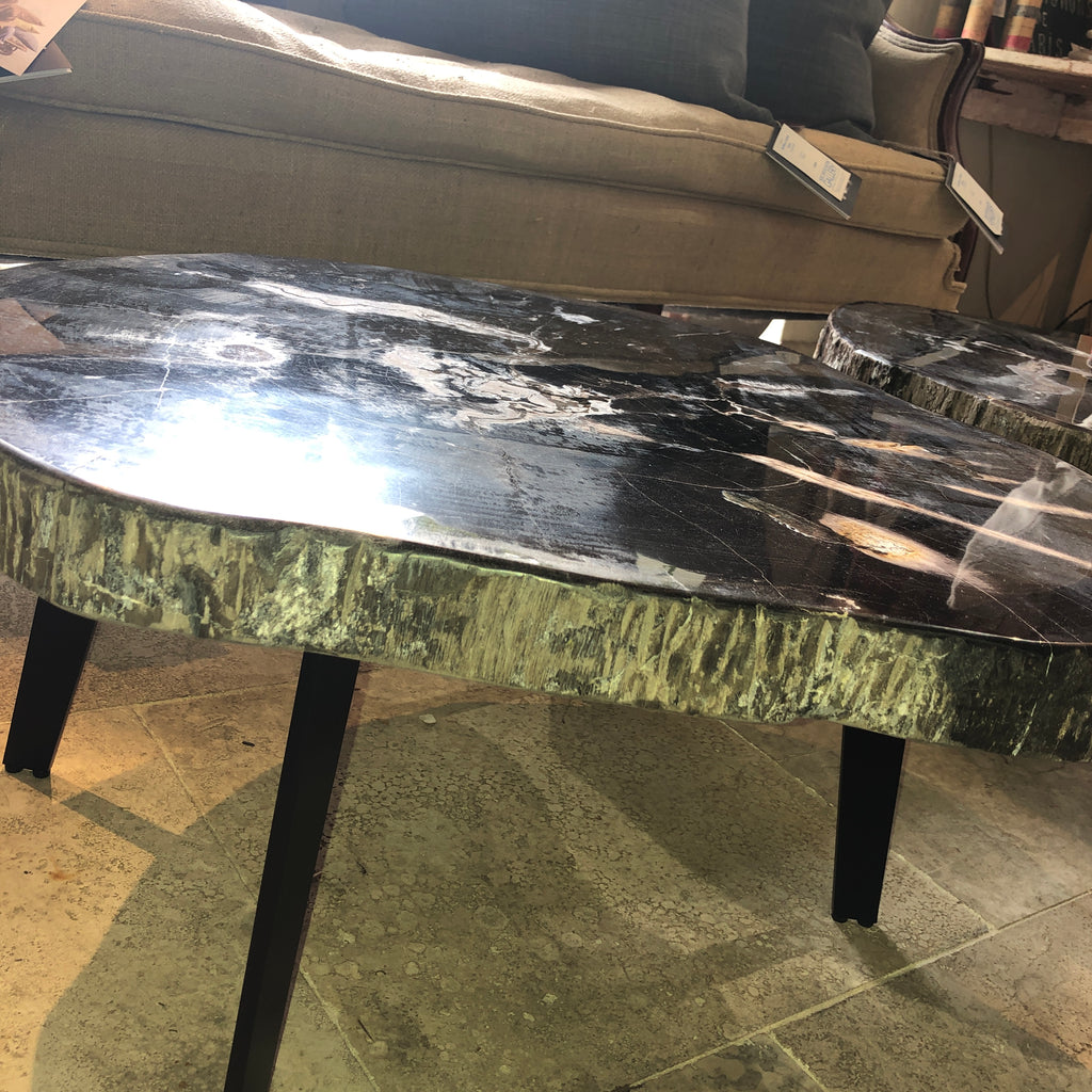 Petrified Wood Slab 1.24 Coffee Table