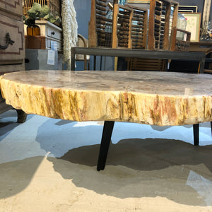 Petrified Wood Slab 131 Coffee Table