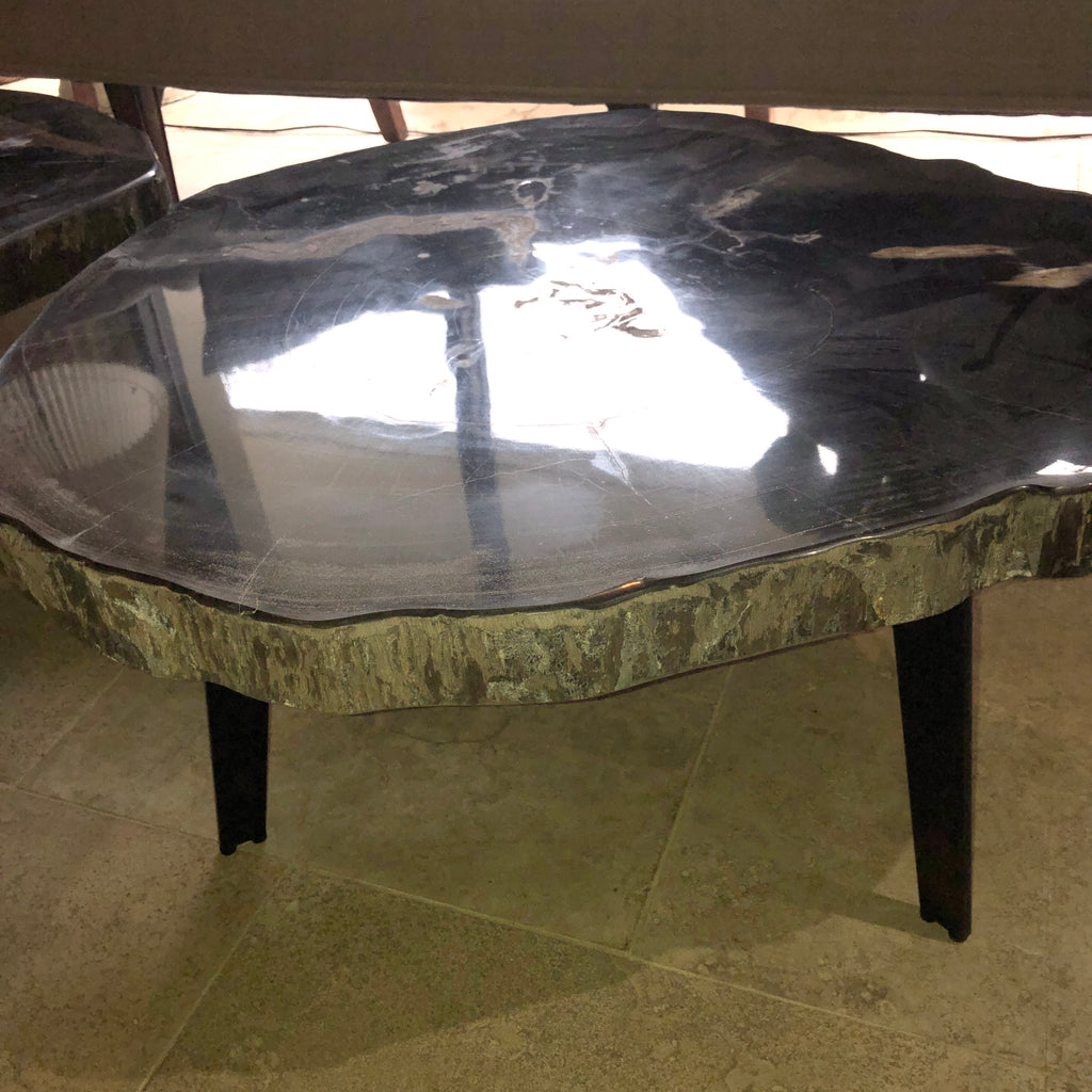 Petrified Wood Slab 1.22 Coffee Table