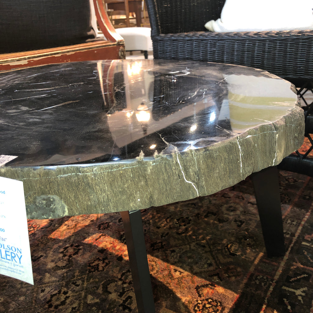 Petrified Wood Slab 1.27 Coffee Table