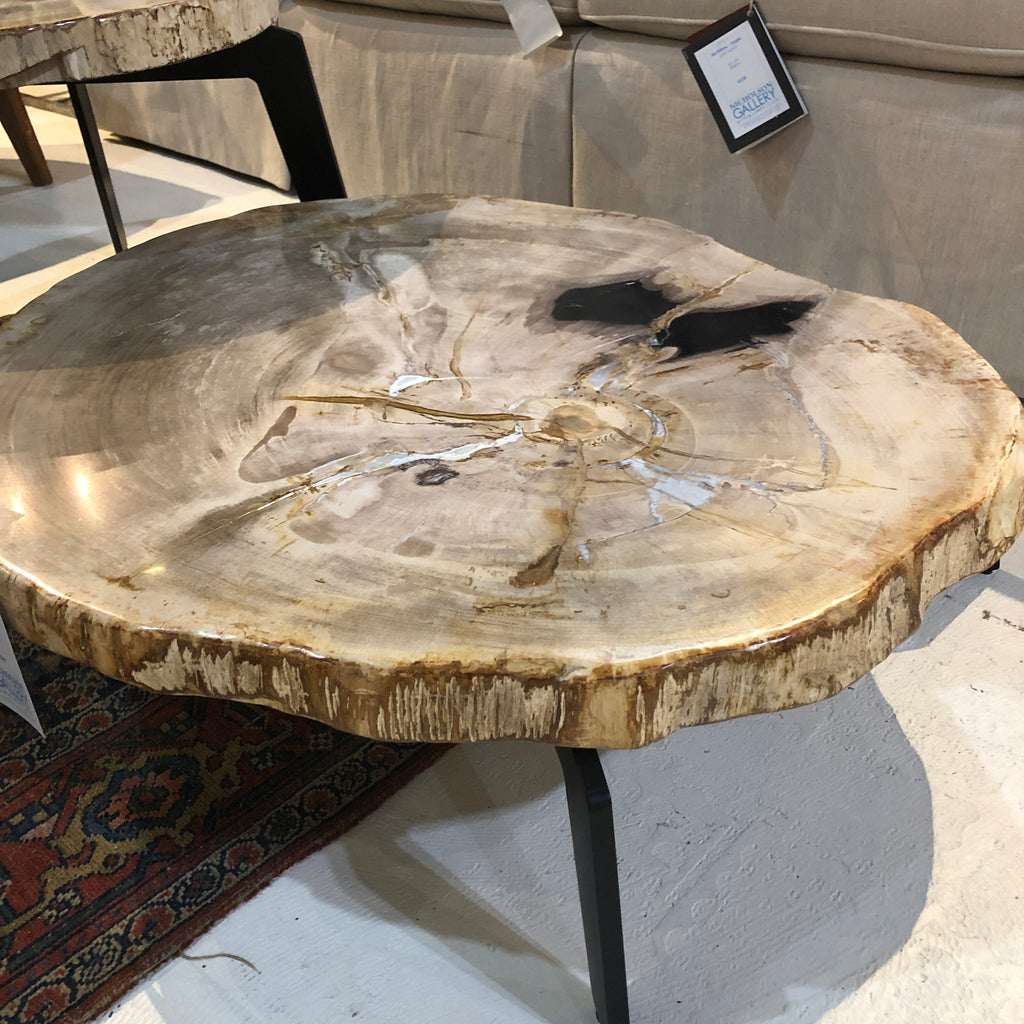 Petrified Wood Slab Cream 32 Coffee Table