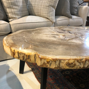 Petrified Wood Slab Cream 70 Coffee Table