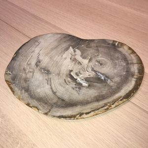 Petrified Wood Plates - Brown/Grey