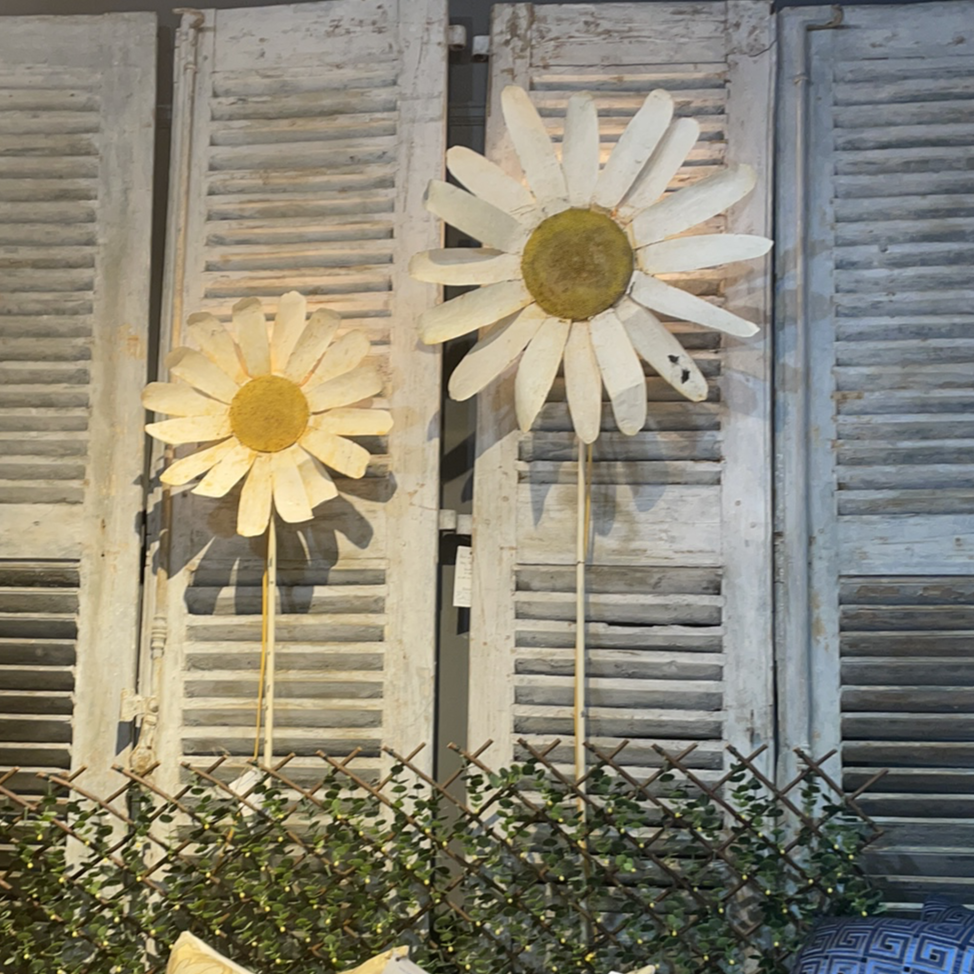 Metal Daisey Sconces