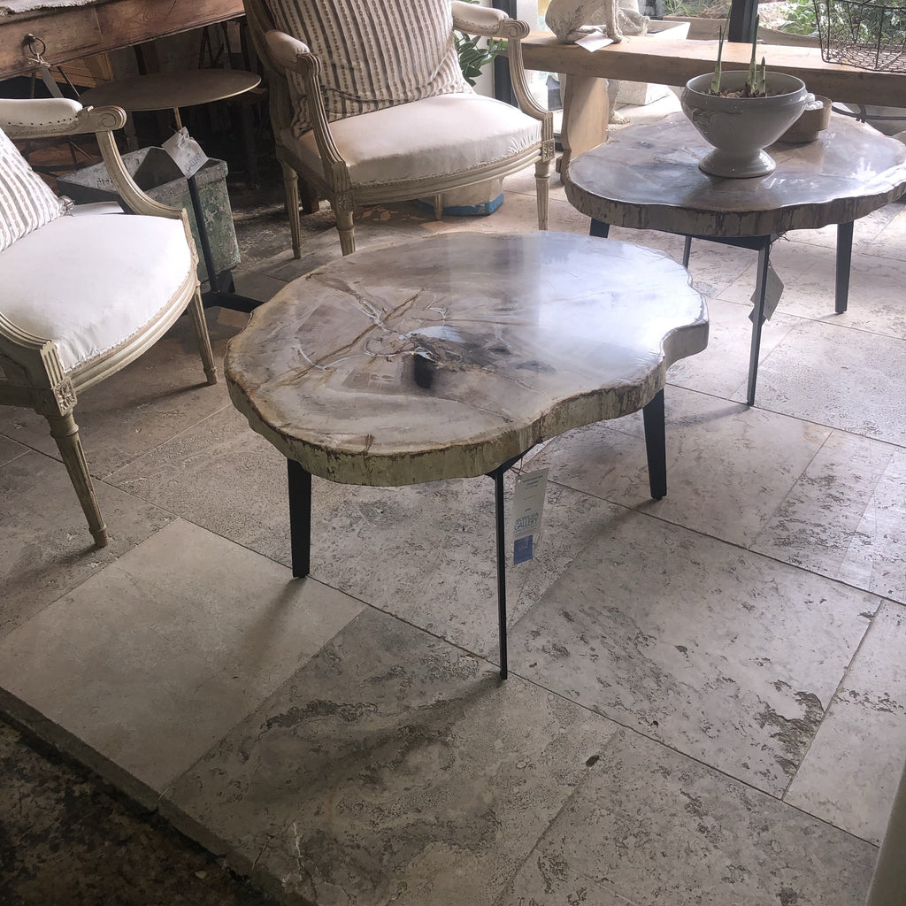 Petrified Wood Table - Creme Matte