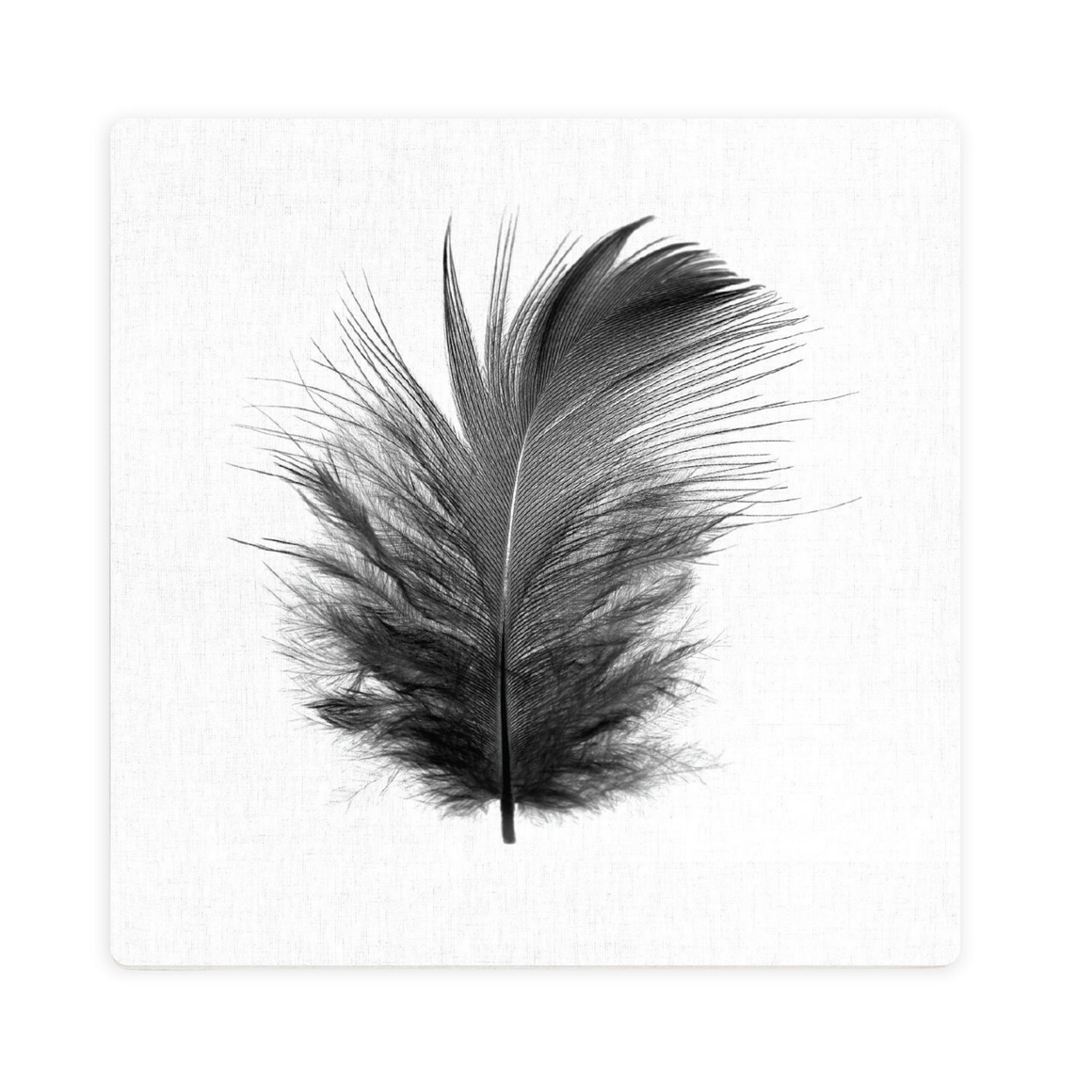 LUXE MONOCHROME FEATHER CERAMIC COASTER / CORK BACKING