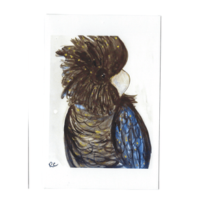 BLACK COCKATOO BARRY GREETING CARD / RACHEL CARROLL - Bowerbird on Argyle