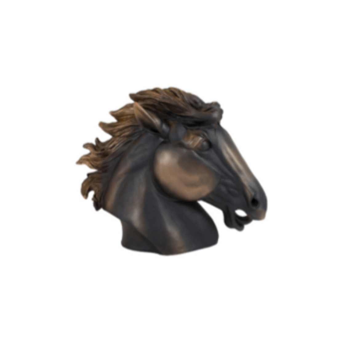 WINX RESIN BRONZE HORSE HEAD