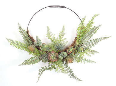 VIEW LARGERROLL OVER IMAGE TO ZOOM  Download Images FERN AND SUCCULENT WALL DÉCOR - Annelisse's