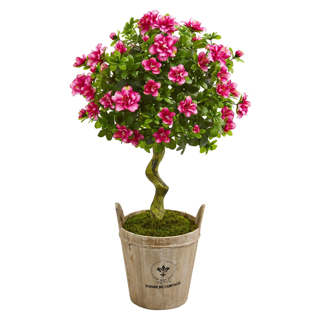 3 Ft. Azalea Topiary Tree in Farmhouse Planter - Annelisse's