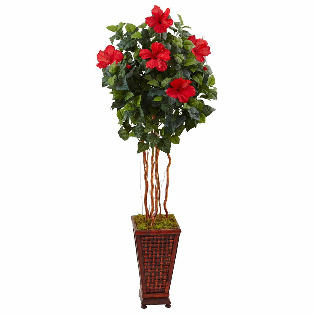 5 ft Hibiscus Tree in Decorated Wooden Planter - Annelisse's