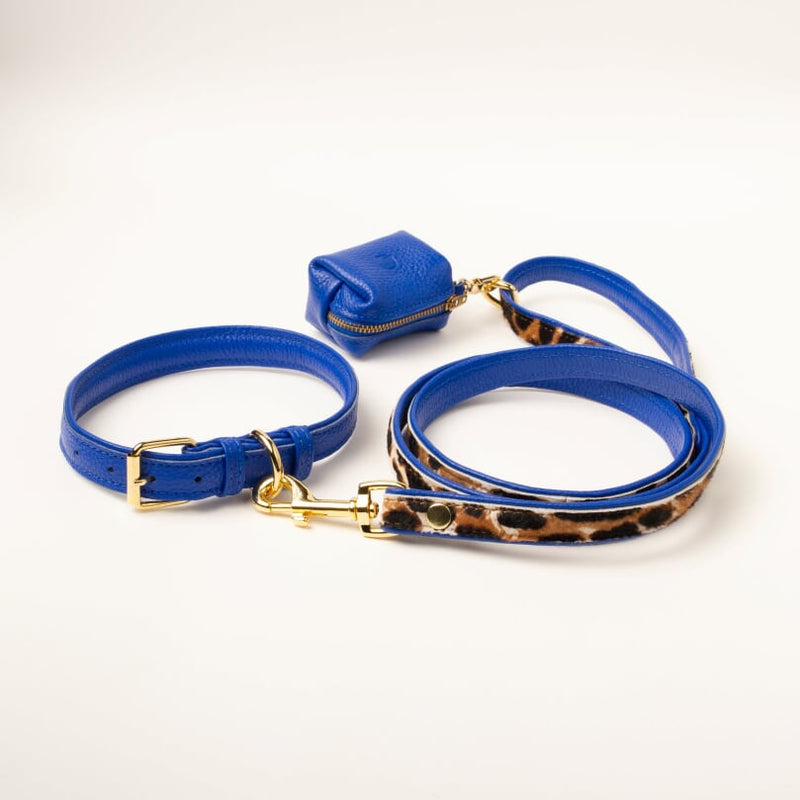 Willow Walks double sided soft leather lead in leo and cobalt blue