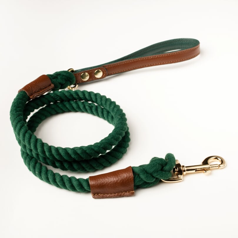 Willow Walks rope lead with leather handle in brown and dark green