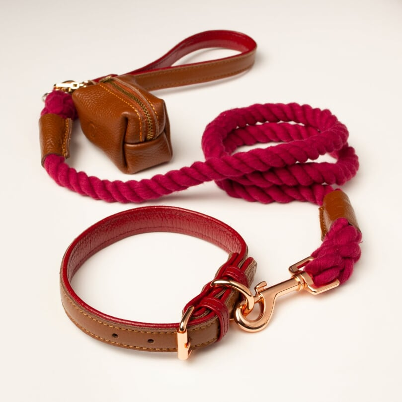 Willow Walks Rope Lead Bundle in Brown and Berry SAVE £12