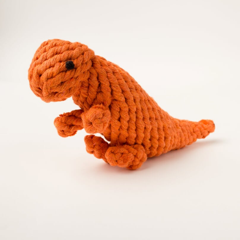 Willow Walks Dino dog rope toy in orange
