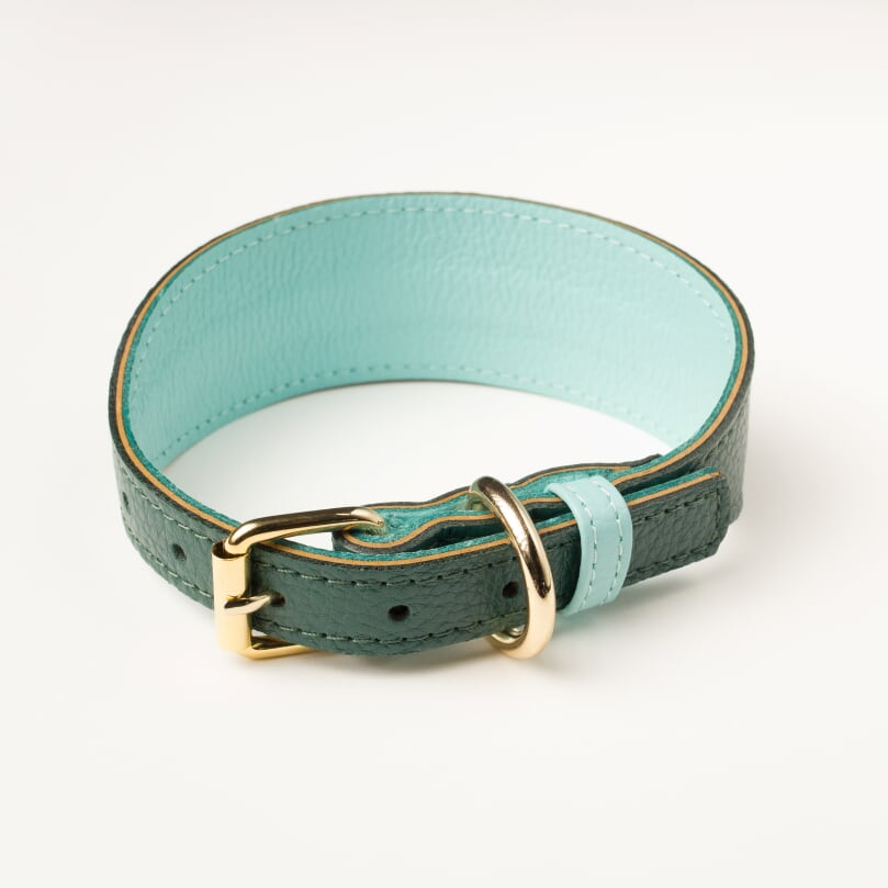 Willow Walks leather sighthound collar in dark green and aqua