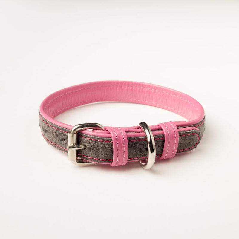 Willow Walks leather collar with ostrich effect in grey and bright pink