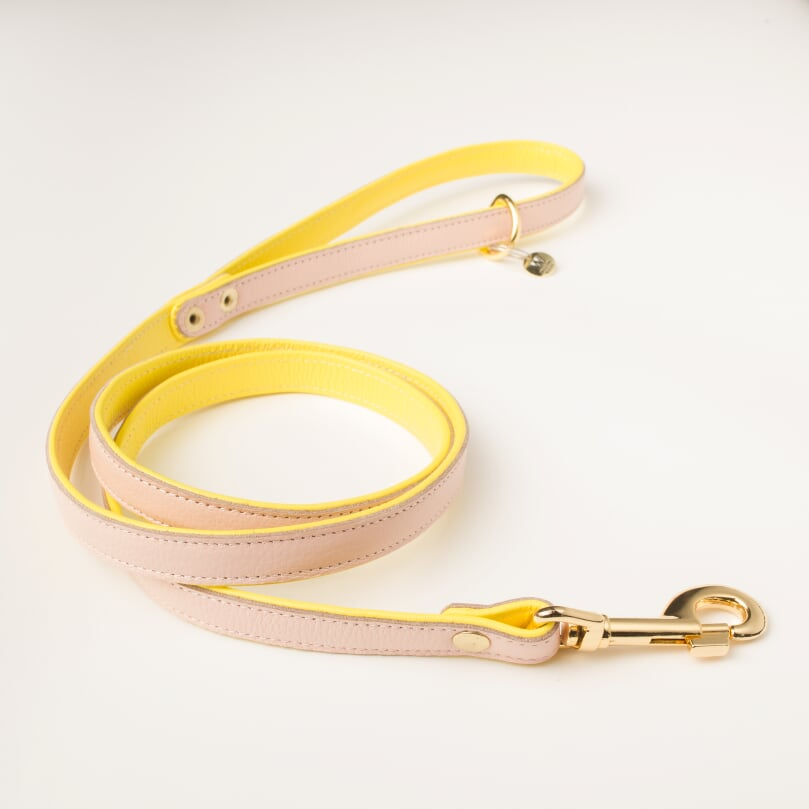 Willow Walks double sided soft leather lead in yellow and soft pink
