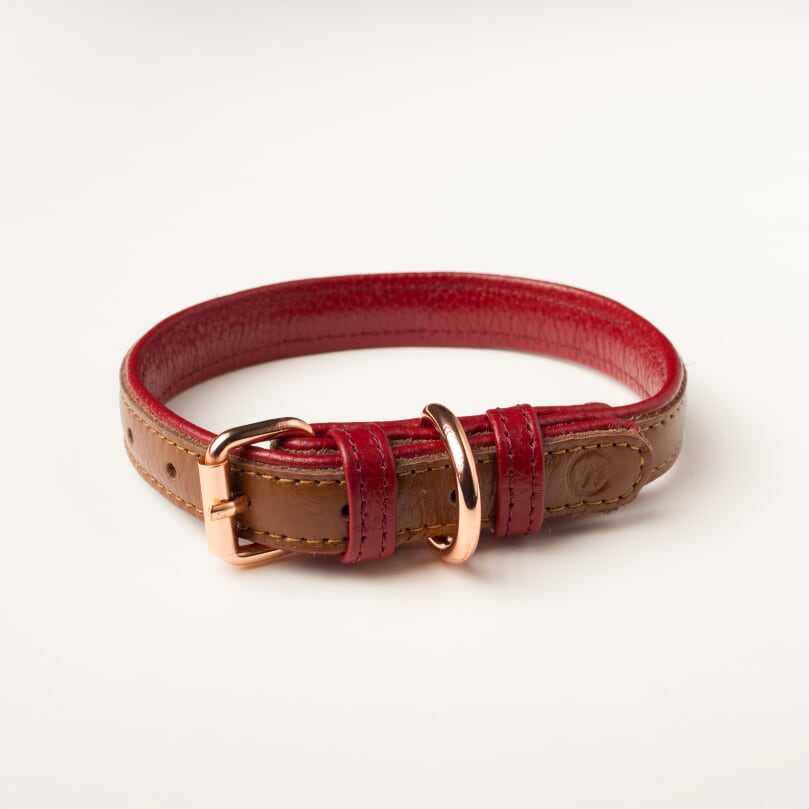 Willow Walks leather collar in brown and berry