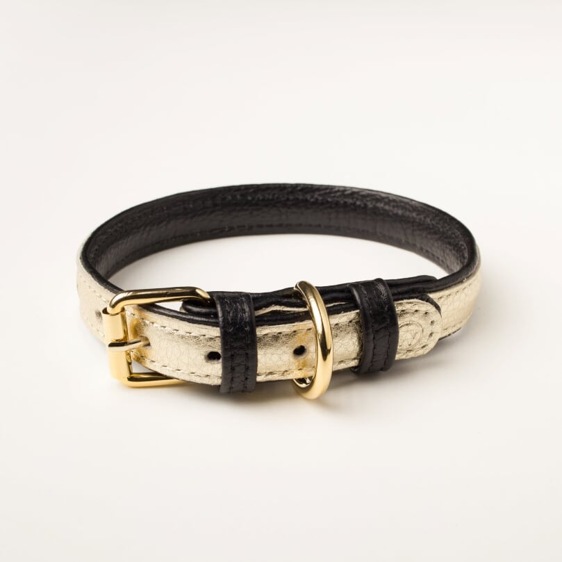 Willow Walks premium leather collar in gold and black