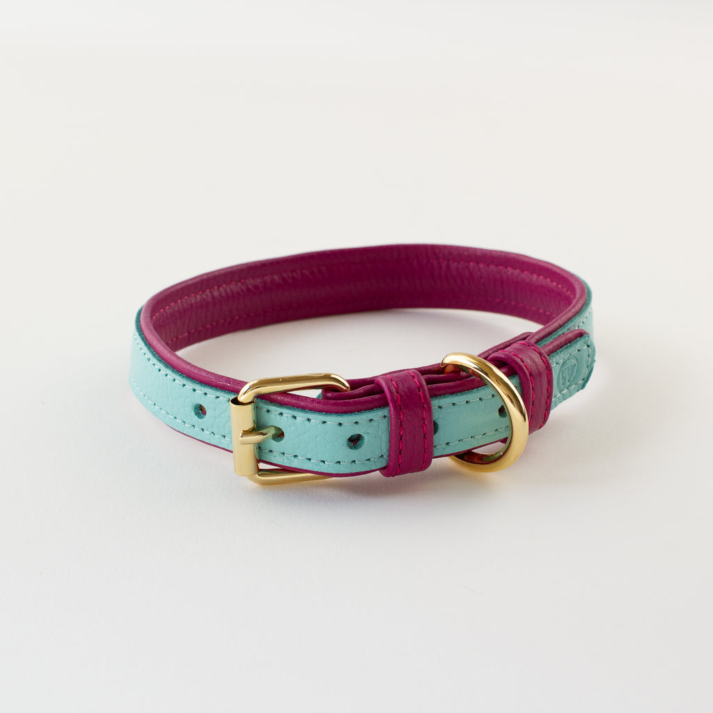 Aqua leather collar Willow Walks