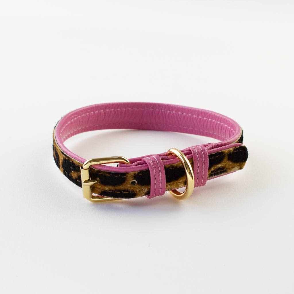 Willow Walks leather collar in leo and hot pink