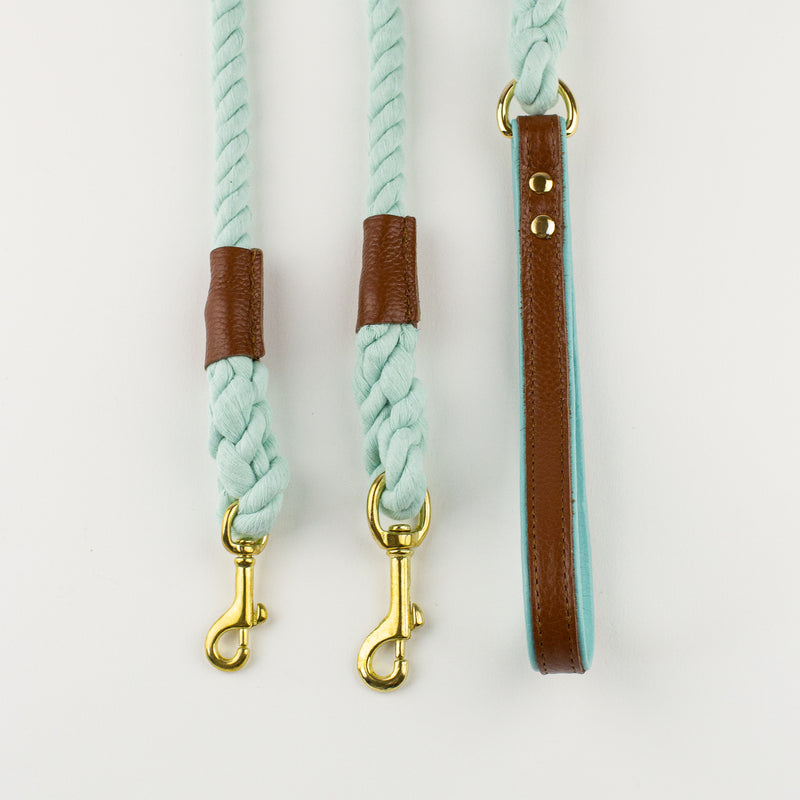 Brown aqua rope lead Willow Walks