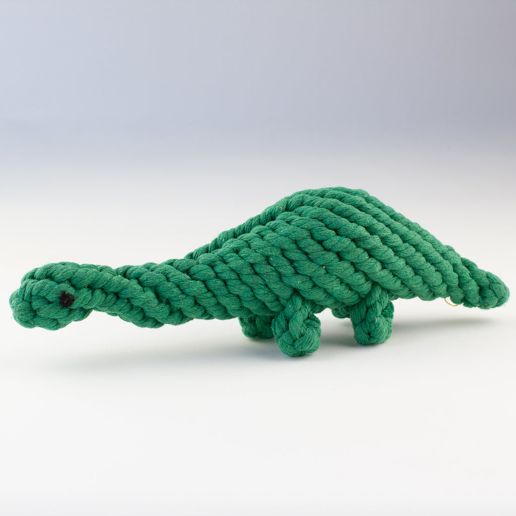 Dog toy dinosaur Willow Walks