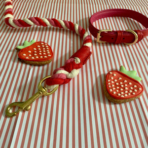 Willow Walks leather collar in two tone red and fuchsia