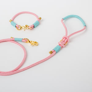 Willow Walks marine rope lead with leather details in pink and aqua