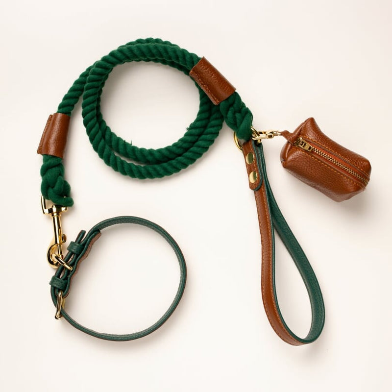 Willow Walks leather collar in brown and dark green