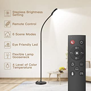 Floor Lamp with Remote