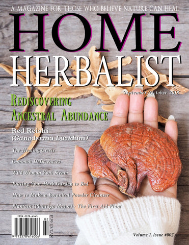 PRINT Issue #002 Rediscovering Ancestral Abundance
