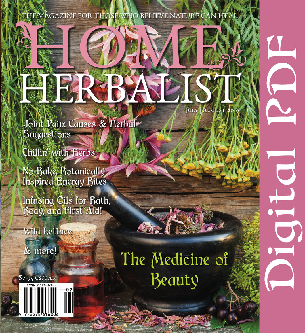 Issue #007 The Medicine of Beauty