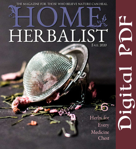 ISSUE #013 - 6 Herbs for Every Medicine Chest